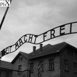Auschwitz, sabato 27 Gennaio 1945