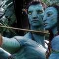 """Biomasse: la riscossa del Comitato """"Avatar"""""""