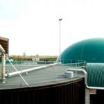 Biomasse, richiesti i controlli