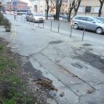Escrementi in strada: che tristezza