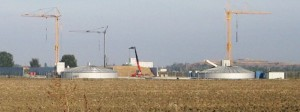 biomassa-amola